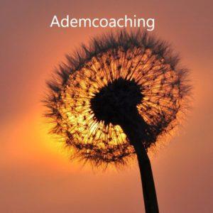Ademcoaching Yogastudio Krommenie