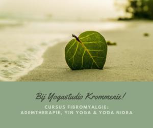 Cursus Fibromyalgie: Ademtherapie, Yin Yoga en Yoga Nidra